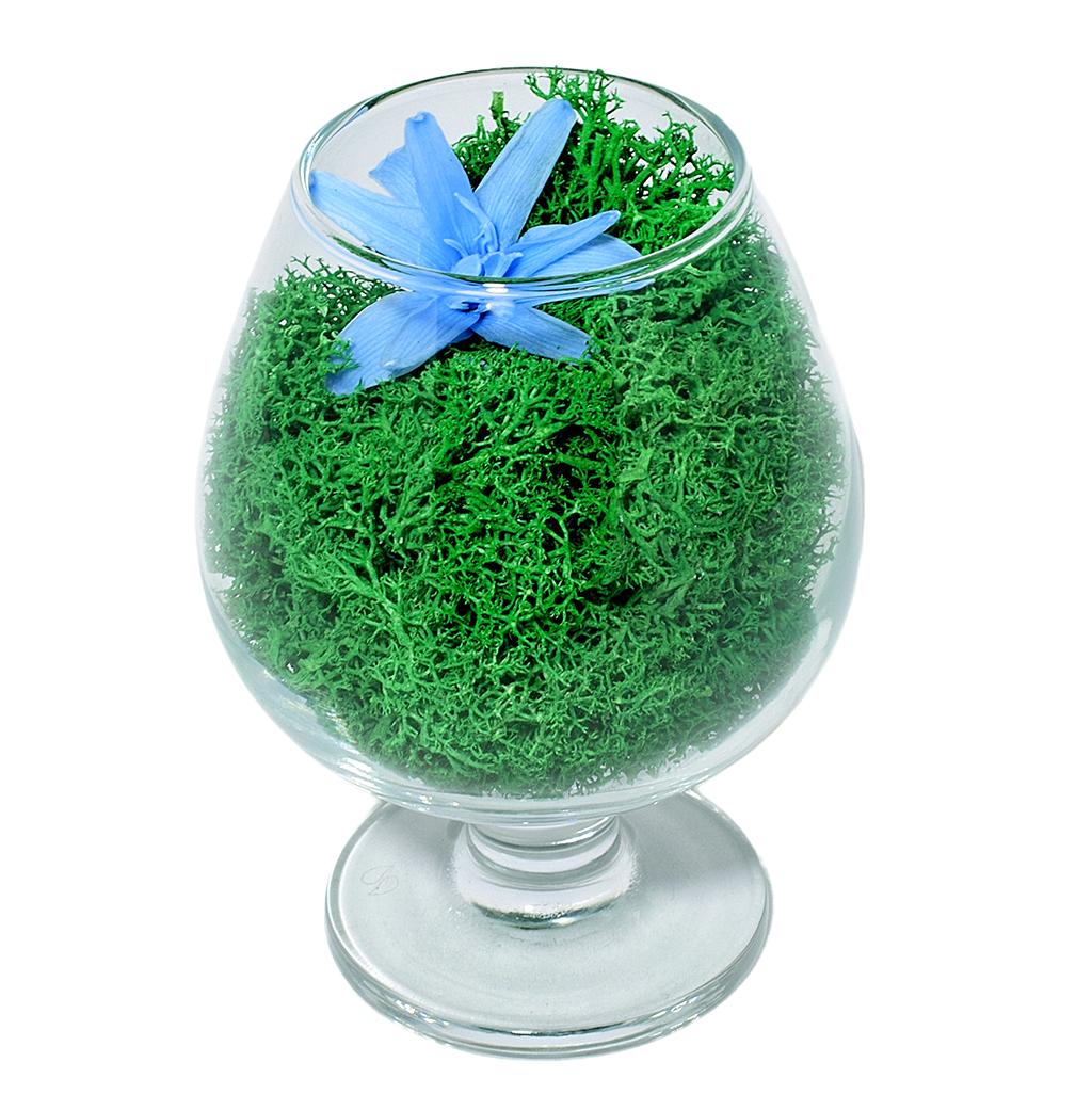 Стабилизированные цветы в стекле - Мириам