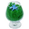 Стабилизированные цветы в стекле неувядающие живые Композиции мох бокал Мириам