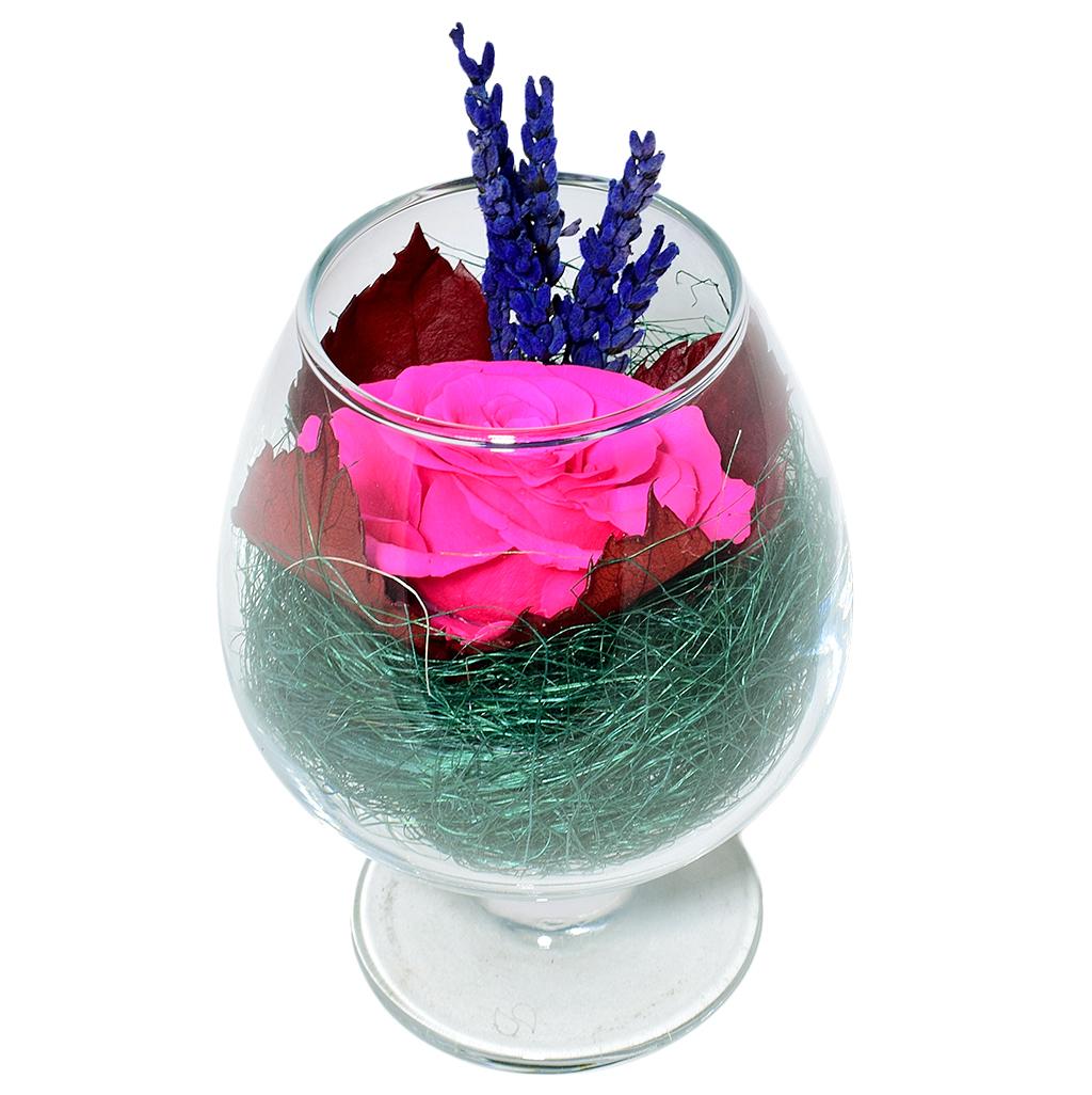 Стабилизированные цветы в стекле - Божоле