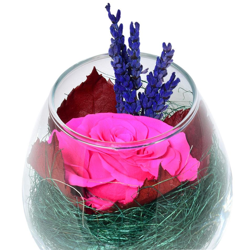 Стабилизированные цветы в стекле растения вечная роза купить Божоле 2.2.14.1