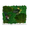 Картина из мха ягеля купить фото