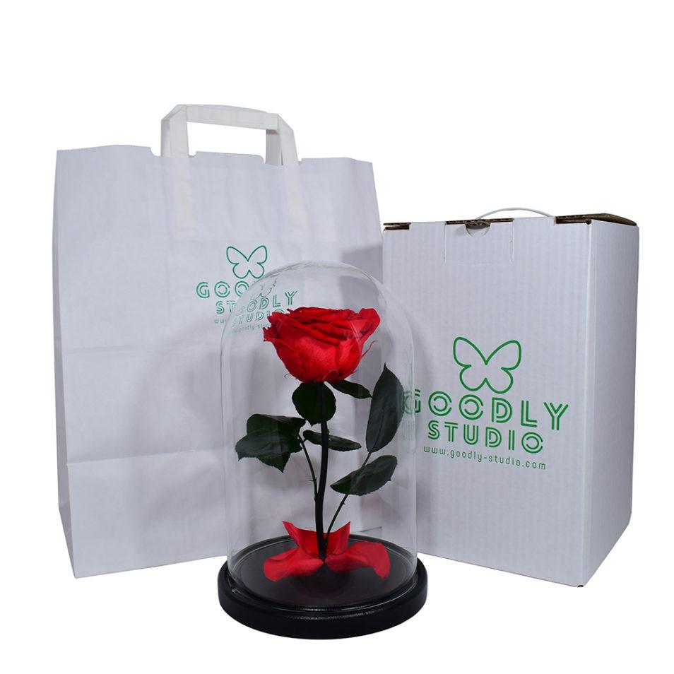 Роза в колбе стеклянной вечная роза фирменная коробка в подарок купить не дорого в москве