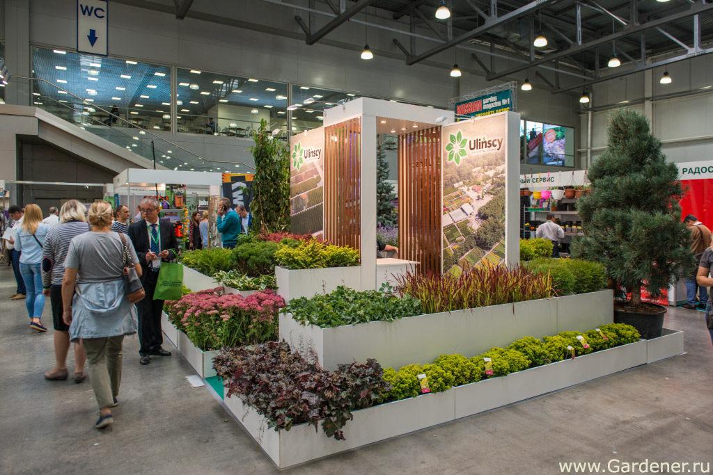 выставка флористики и декора 2019 flowersexpo сада огорода цветов