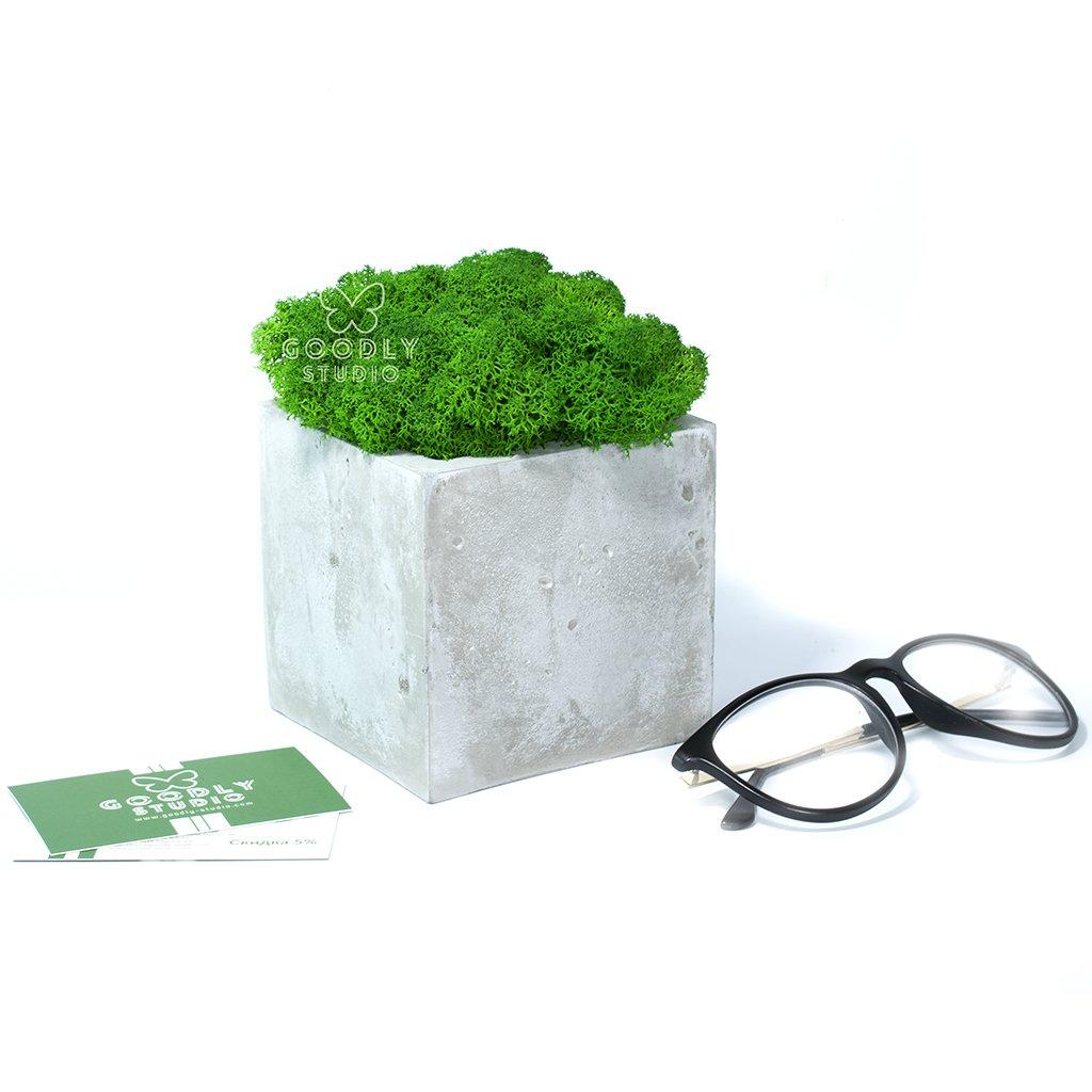 Декоративное кашпо - Куб 1.0 + мох