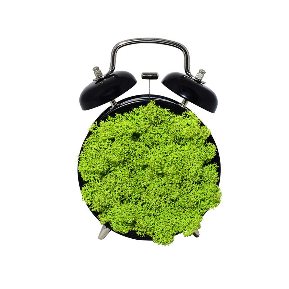Декоративные часы из стабилизированного мха ягель интерьера в стиле лофт модерн минимализм