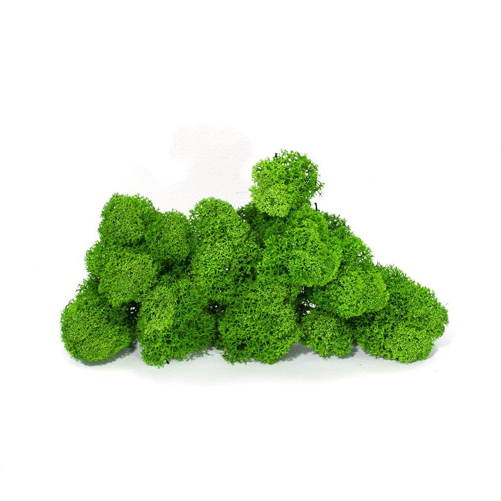 """Стабилизированный мох ягель - """"зел. трава"""" 0,5кг."""