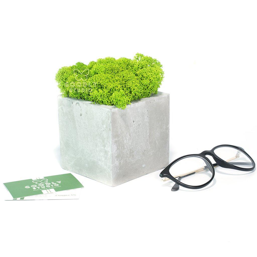 Декоративное кашпо - Куб 1.1 + мох