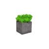 Кашпо мох стабилизированный бетонное черный из цемента купить в Москве недорого
