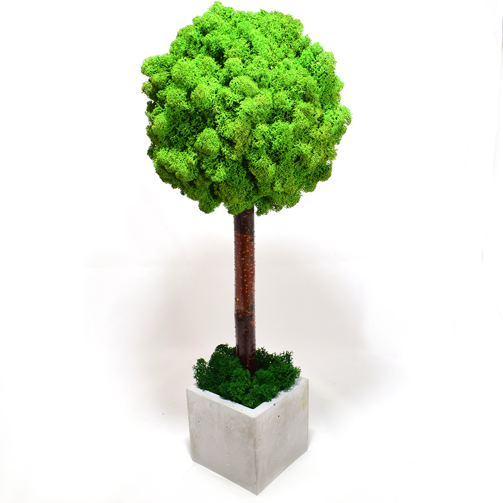 Дерево из мха - 2.0