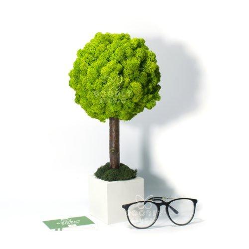 Дерево из мха купить фото
