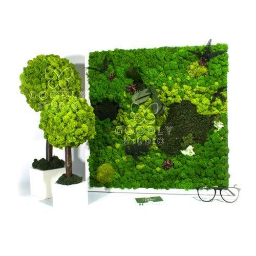 Forest Park картина из мха и деревья из мха