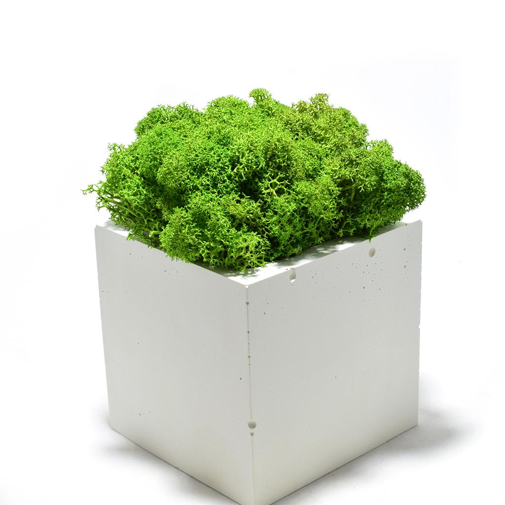 Декоративное кашпо - Куб 3.0+ мох