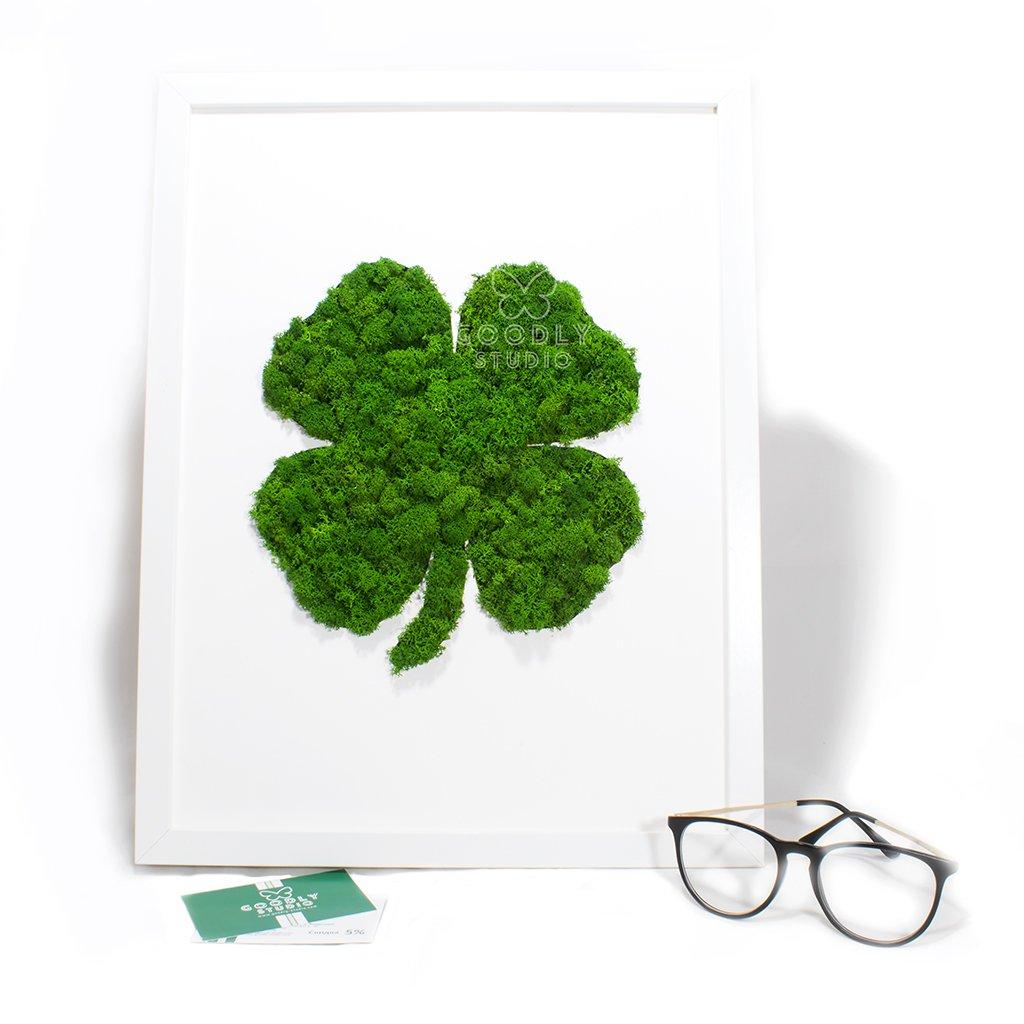 Moss art - Клевер