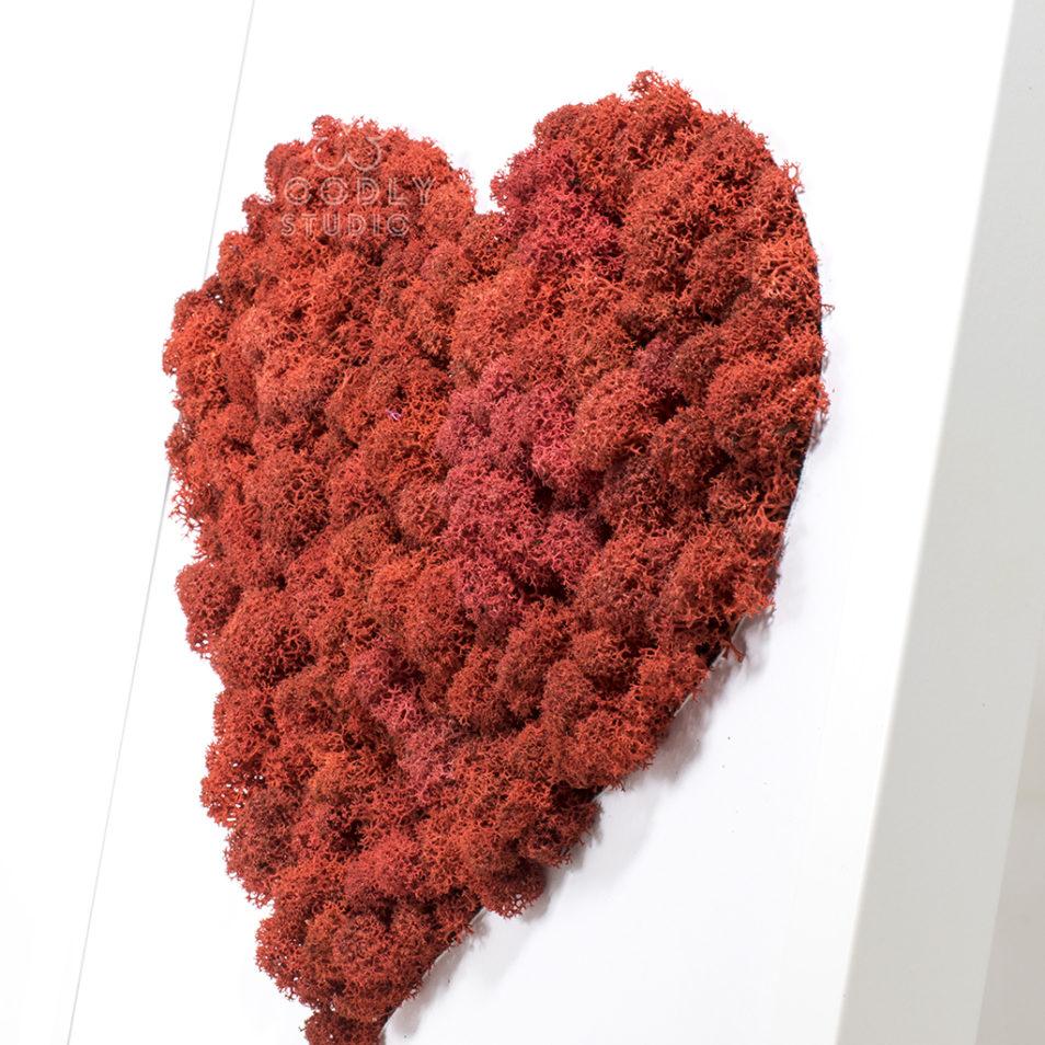 Картина из мха ягеля сердце