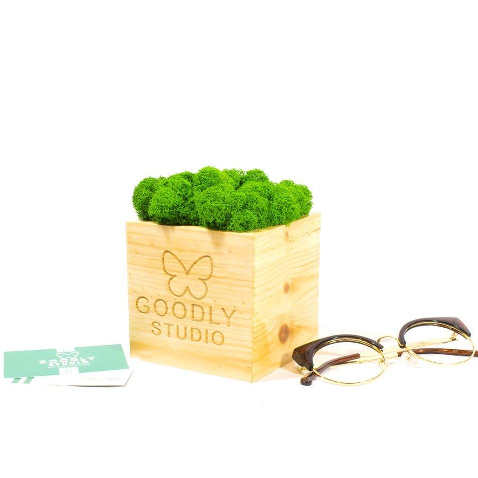 Мох в кубе с логотипом корпоративный подарок