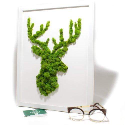 Moss art картина из мха ягель олень