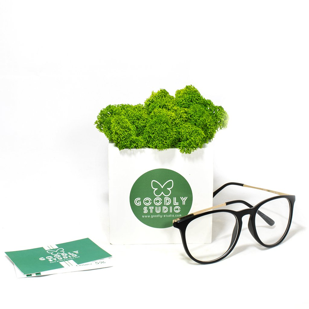 Корпоративный подарок с логотипом кашпо+мох