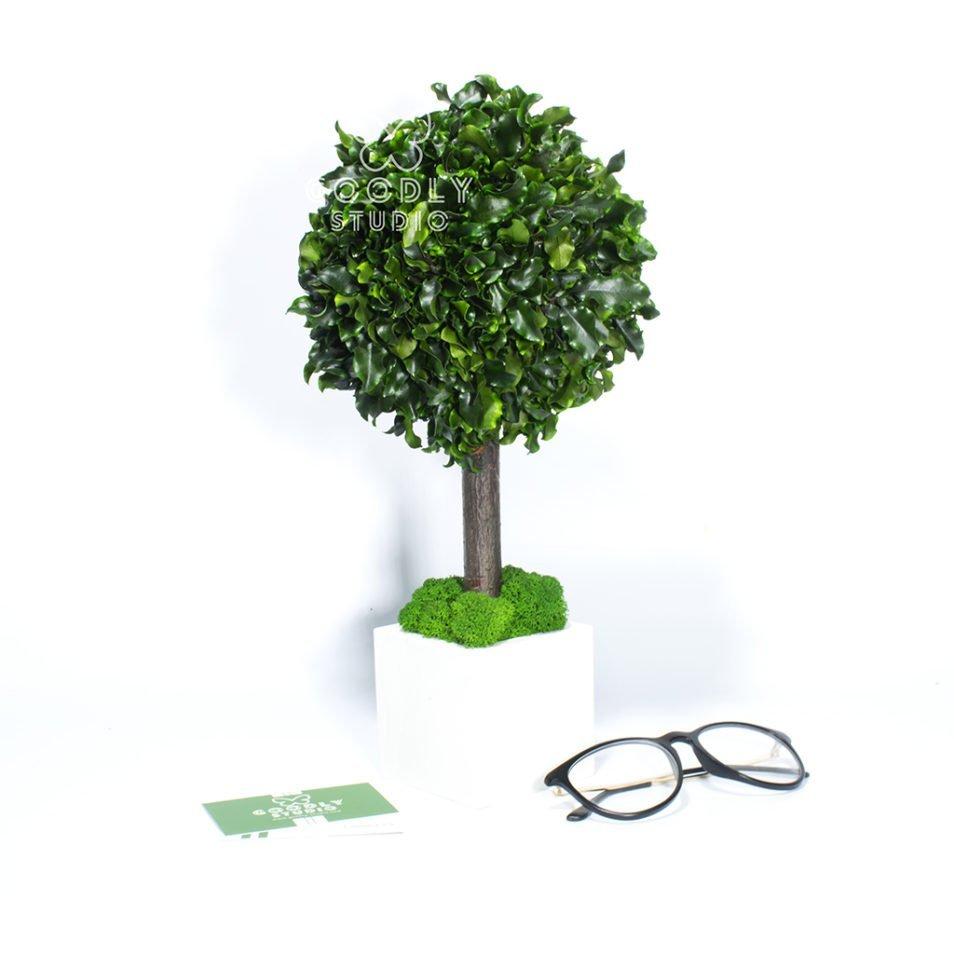 Декоративное дерево для интерьера