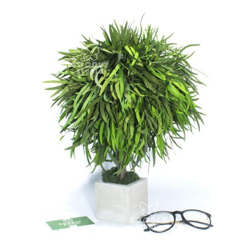 Дерево для домашнего интерьера искусственное купить
