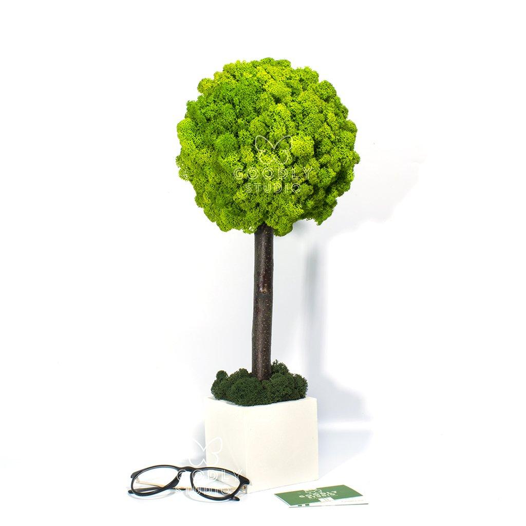 Дерево из мха - 2.1