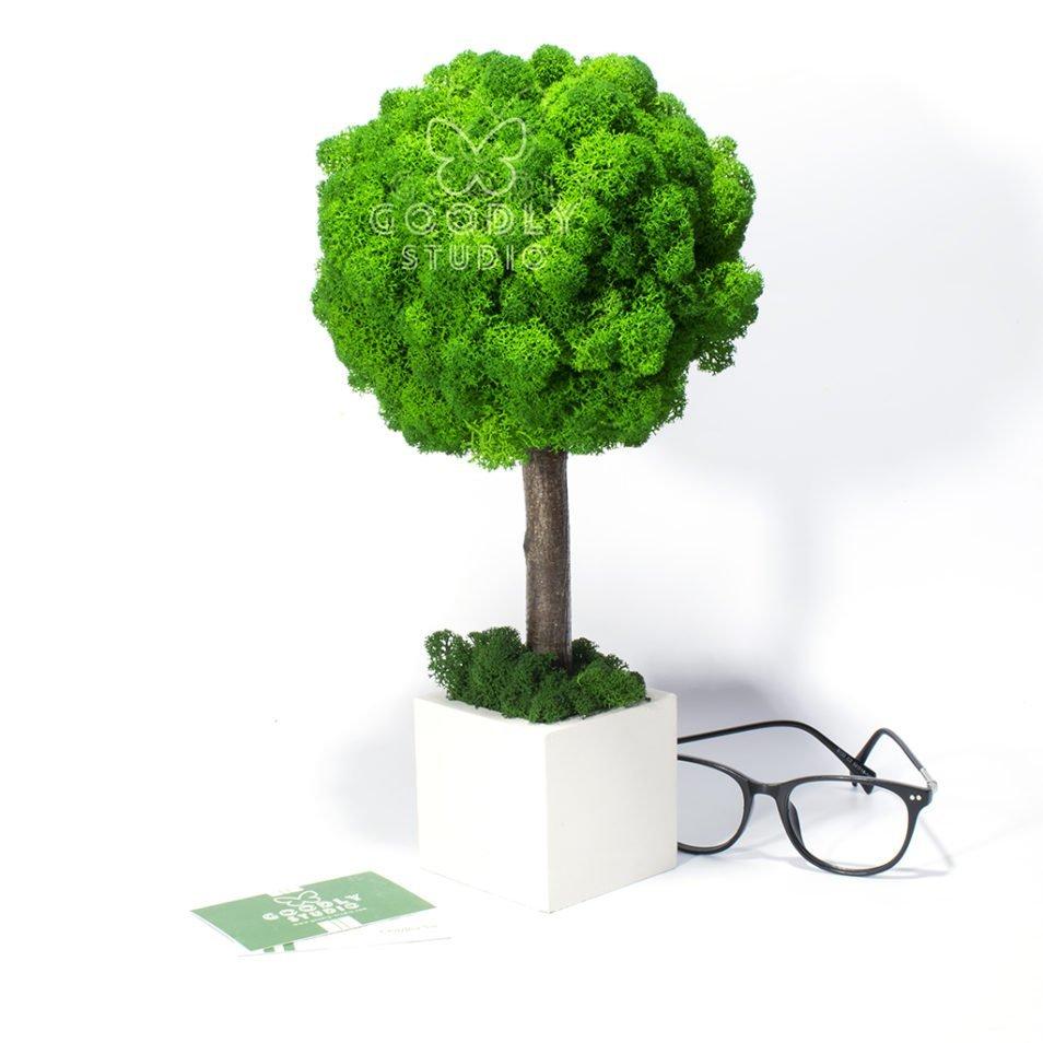 Дерево из мха фото