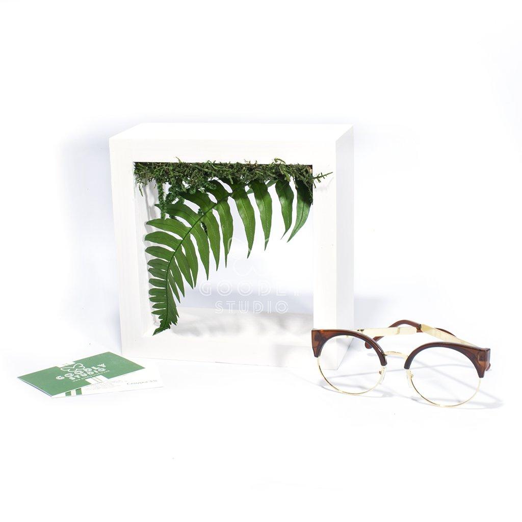 Green frame - 1.0