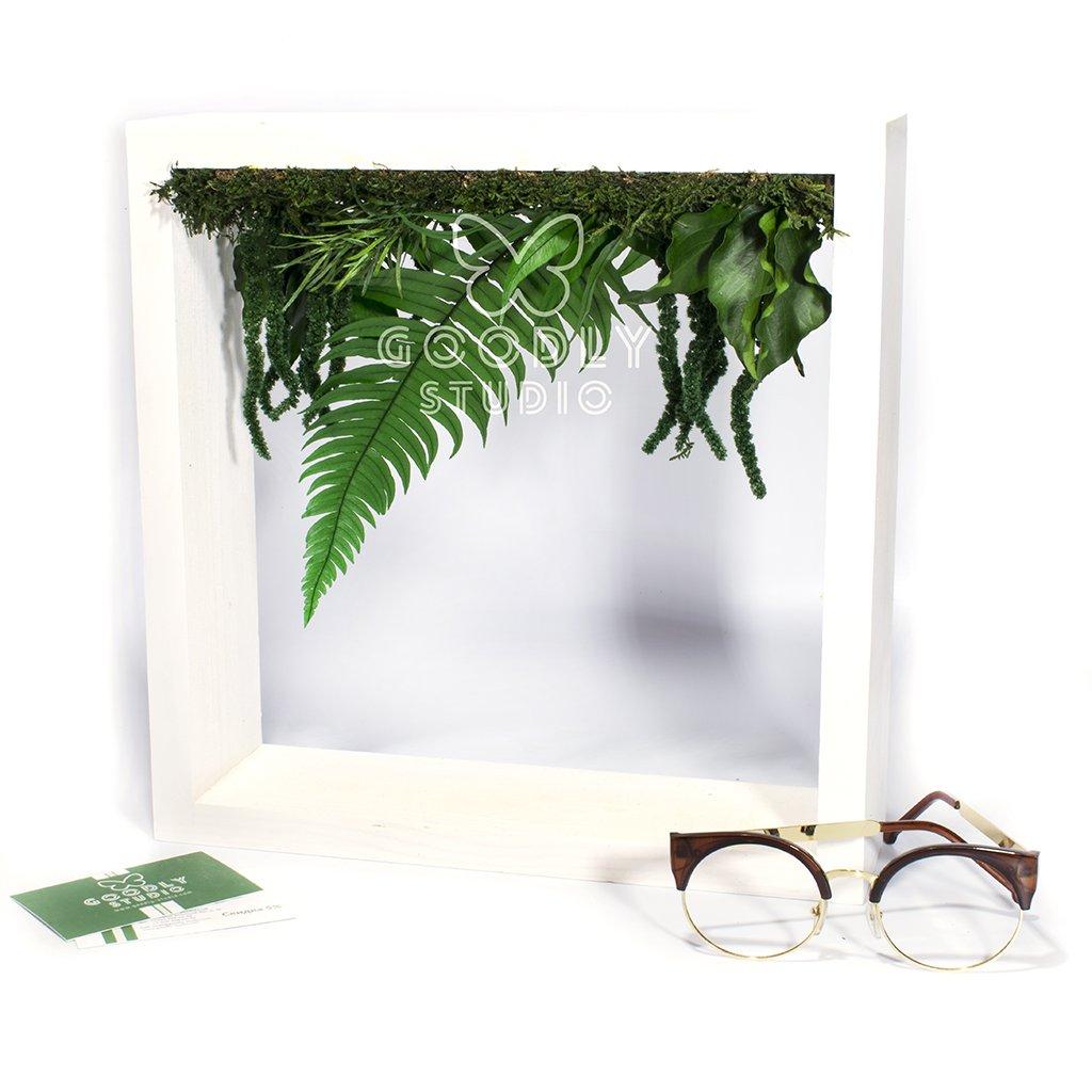 Green frame - 3.0