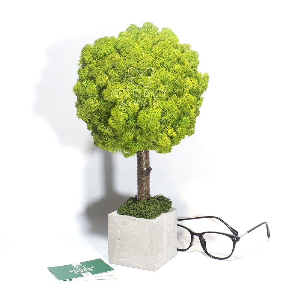 Дерево из мха - 1.3