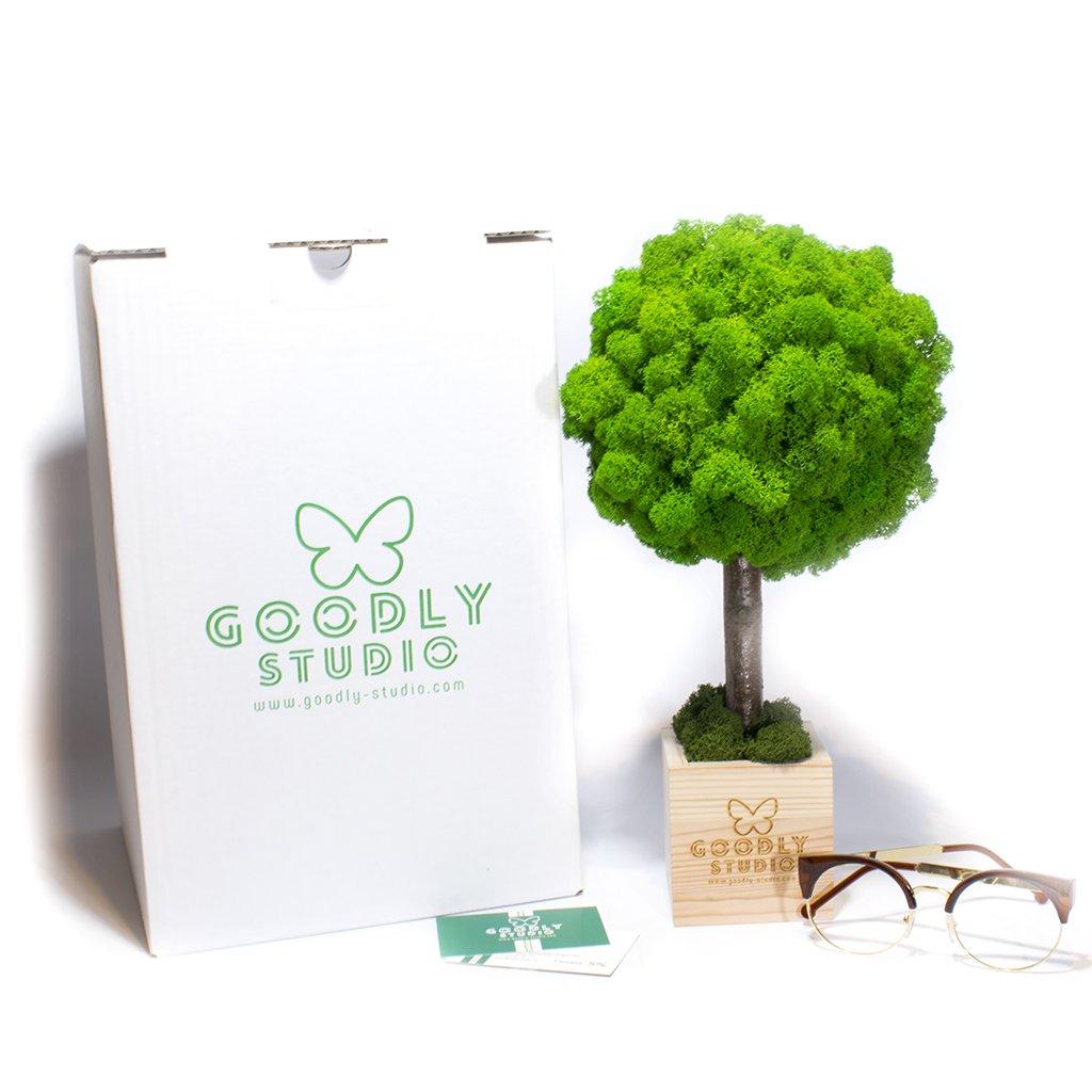 Корпоративный подарок - дерево из мха с вашим логотипом