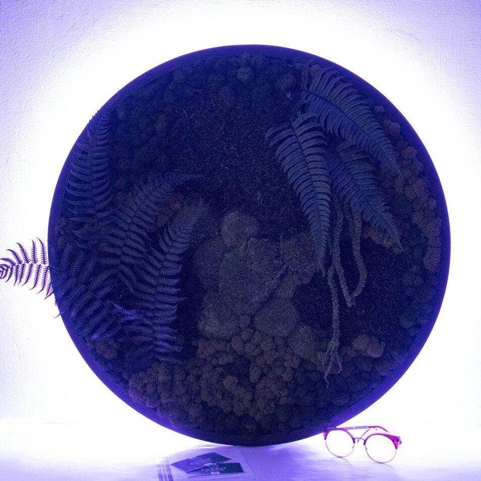 Панно из мха с подсветкой