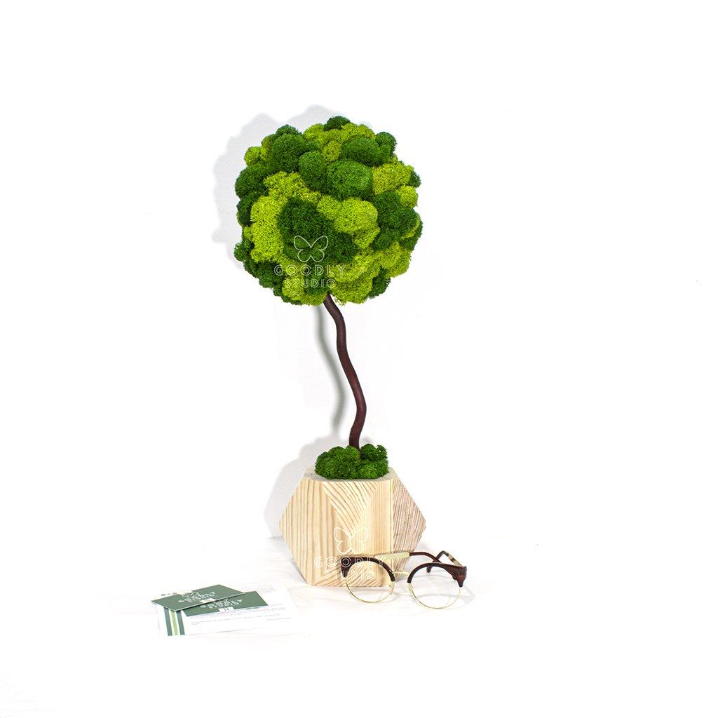 Дерево из мха - 3.0