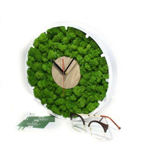 Часы из мха
