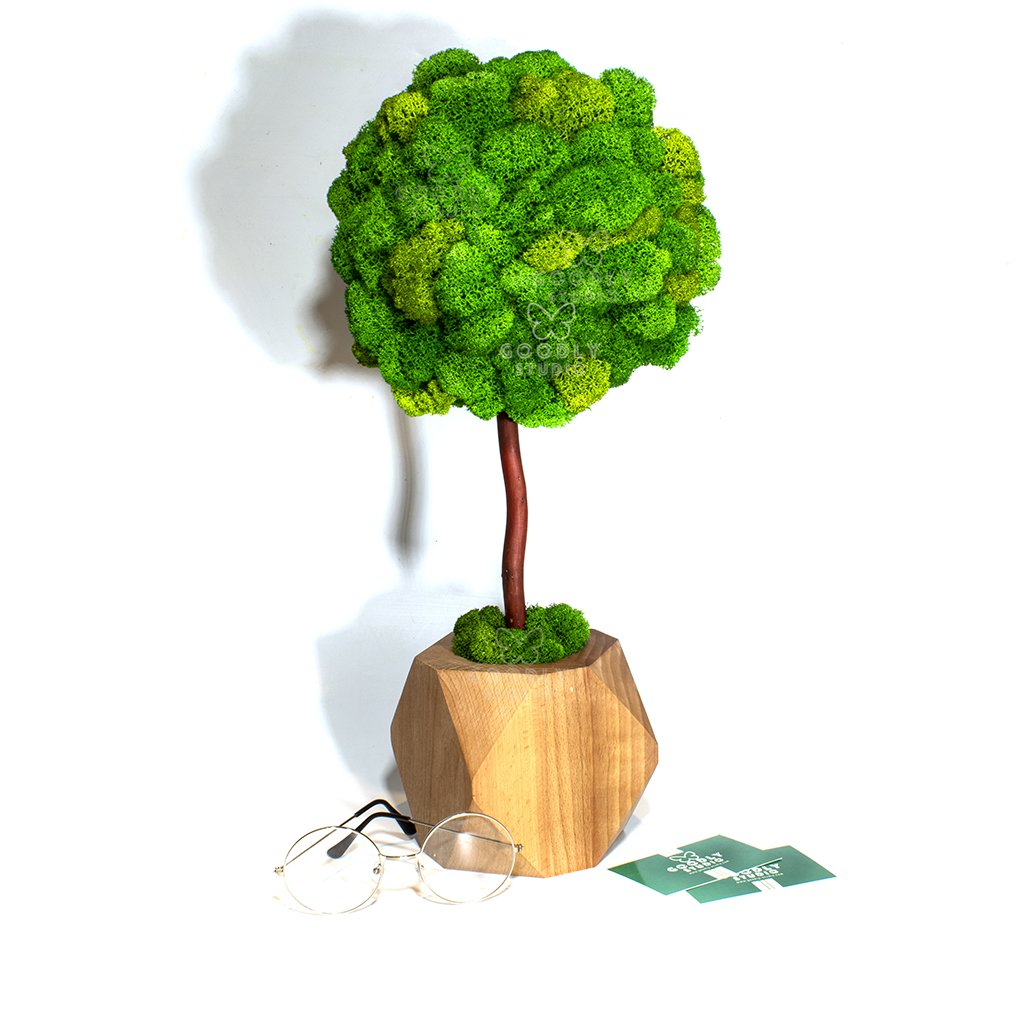 Дерево из мха - 4.1