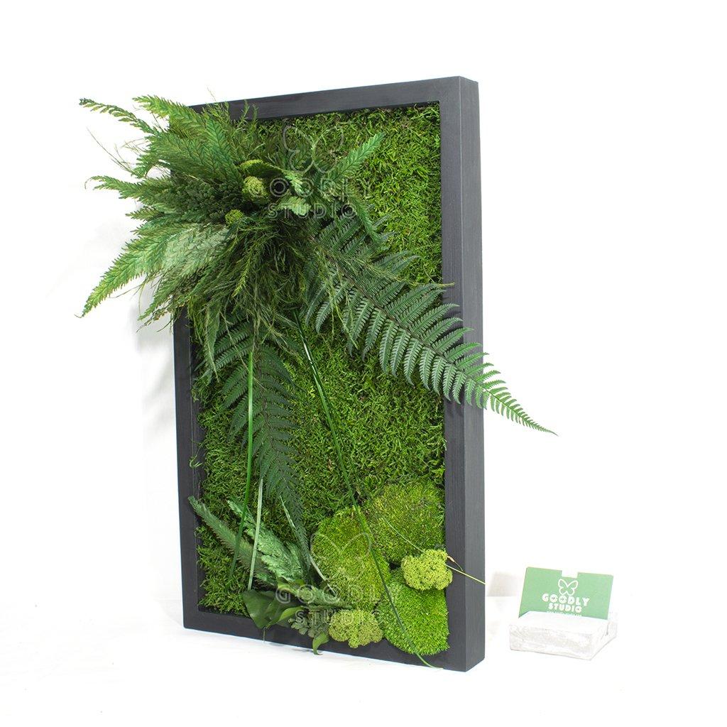 Картина из мха и растений - 12.0