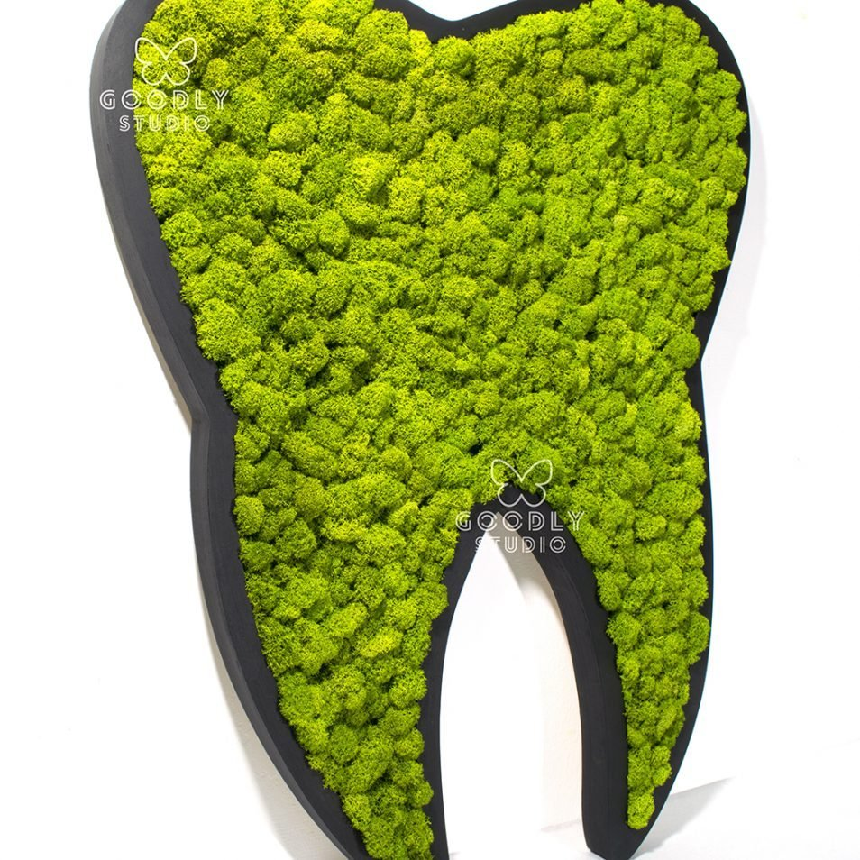 Картина из мха - Зуб